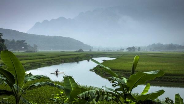southeast asian studies-vietnam