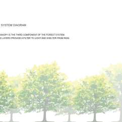 Forest Canopy Diagram Wiring Car Stereo Inspired Structure Design Form And Performance