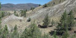 Rudio Creek 4