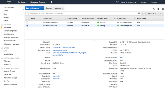 "Figure 9: AWS EC2 Instance with Private IP Address of ""172. 31. 25. 154"""