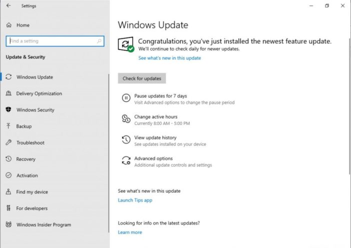 Showing the updated Windows Update Settings page. The subpage links are now buttons instead of hyperlinks, and have icons next to them.