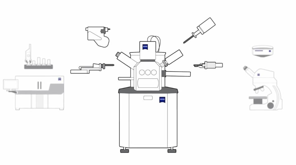 Microscopes, Software & Imaging Solutions ZEISS
