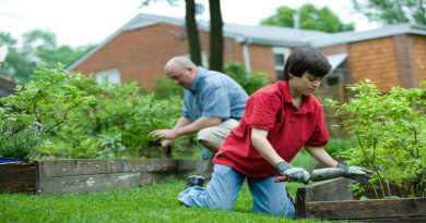 Tricks For Gardening