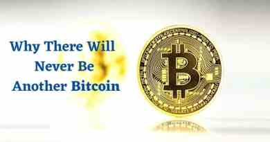 Why There Will Never Be Another Bitcoin - Experts Opinion