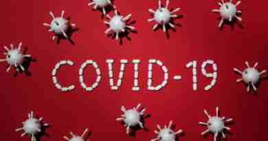 Major Impact Of COVID-19 On Pet Industry