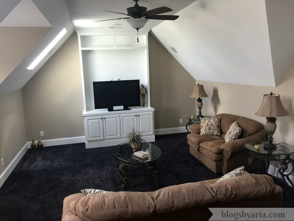 theater/bonus room