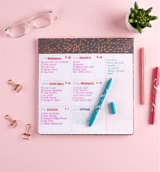 Erin Condren Designer Schedule Pad