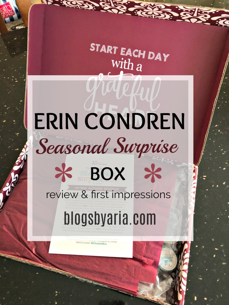 Erin Condren Fall Seasonal Surprise Box #ECSurpriseBox