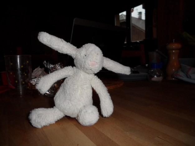 My rabbit, Pom Pom