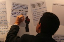 AFI members detail their institution's achievements under the Maya Declaration at the 2013 GPF.