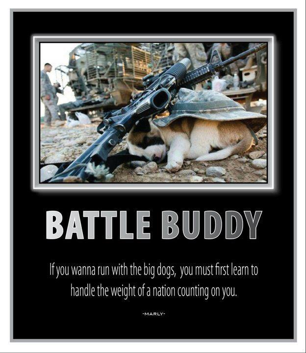 Battle Buddy Blogsense By Barb