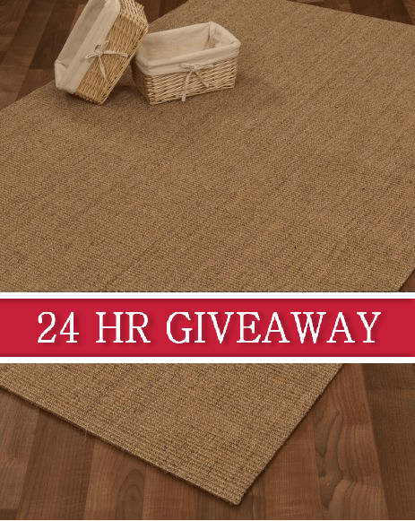 We are giving away this beautiful 4x6 Pavillion Sisal Rug this week!