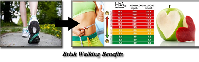 Brisk Walking for Weight Loss and Normal Blood Sugar Levels
