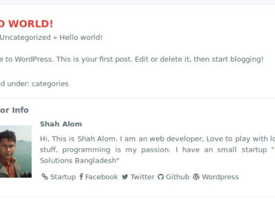 Add author bio with social links to blog post