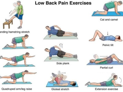 Lower Back Stretches – Stretching Exercises to Treat Back Pain