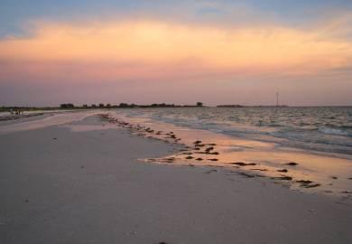 Tide Calendars Prediction Fort Desoto North Beach