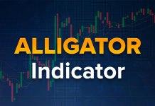 Chỉ báo Alligator - Cách sử dụng để giao dịch tại IQ Option