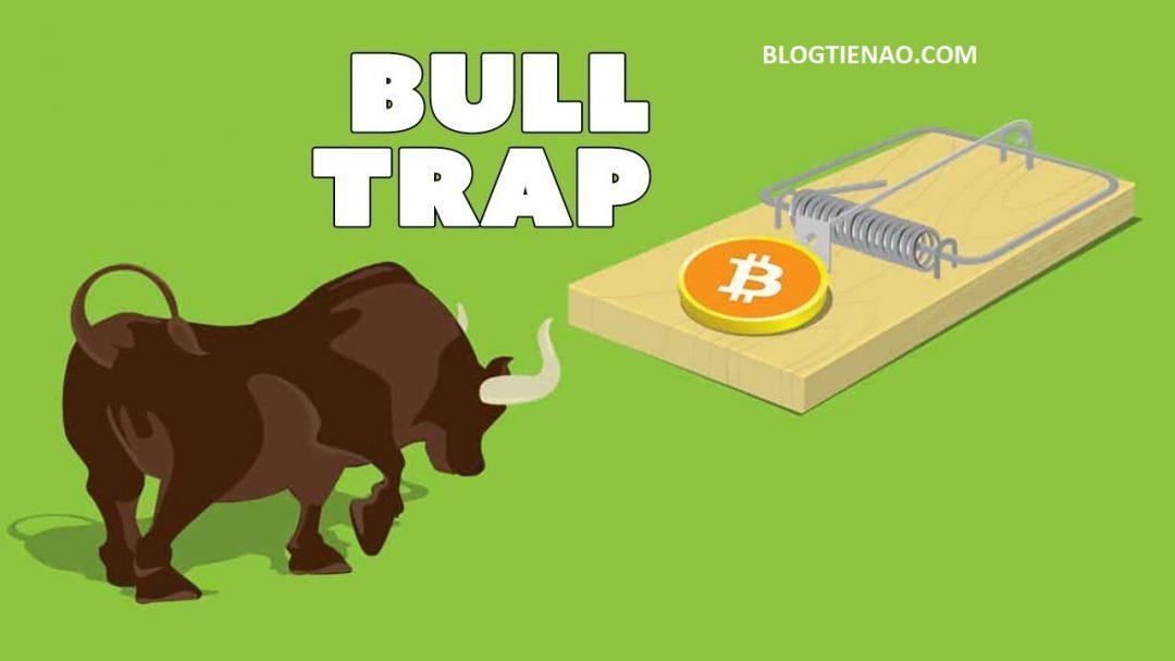 can-than-voi-bull-trap-va-bear-trap