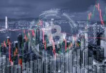 Đừng cố gắng dự đoán sự biến động của giá Bitcoin!