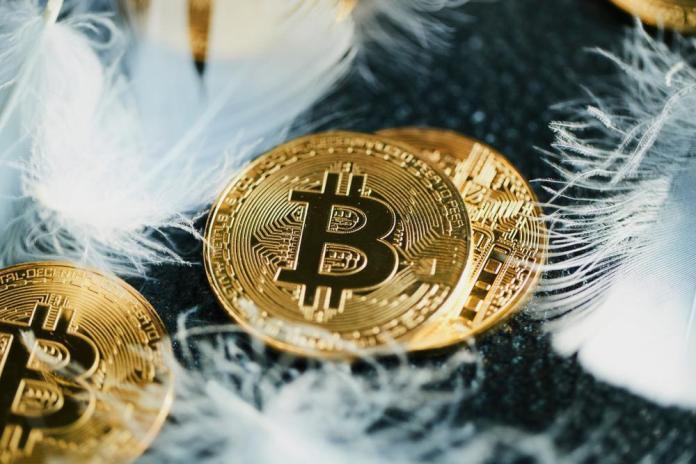 Khảo sát của Binance Lite: 23% người dùng có ý định hold Bitcoin mãi mãi