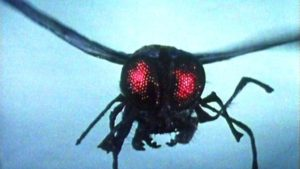 Fly Insect - Doctor Who - The Green Death (c) BBC