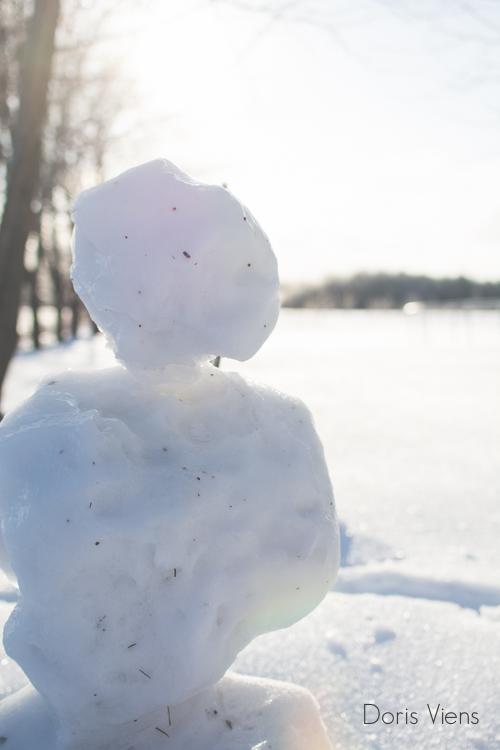 Matin d'hiver