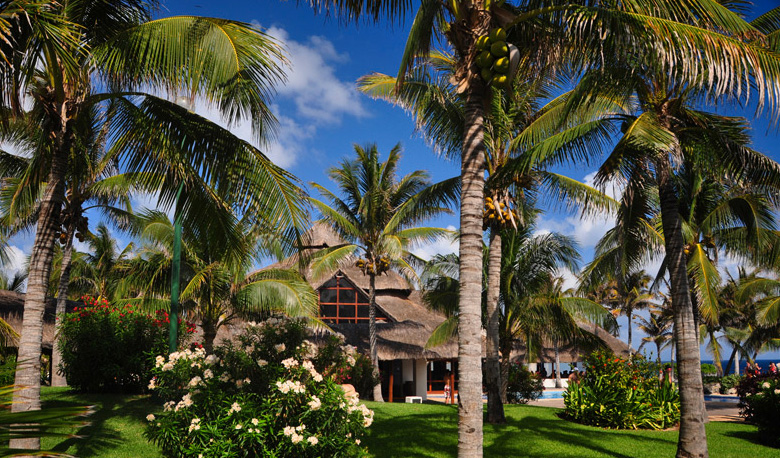 grand-cancun-oasis-2014-13