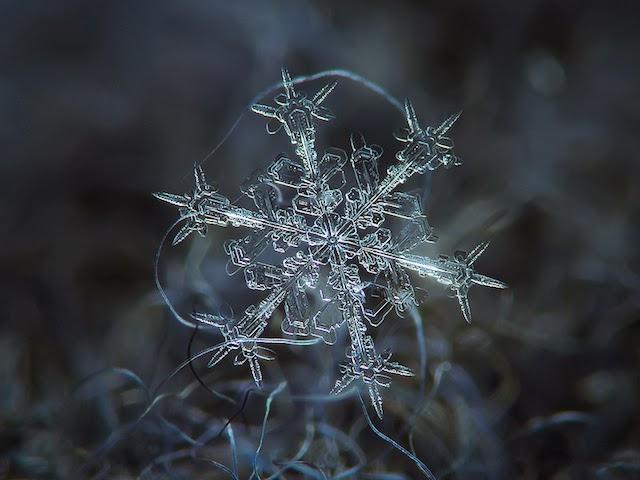 flocons-de-neige-a-moscou-1
