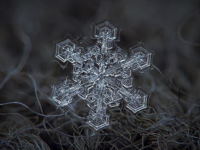 flocons-de-neige-a-moscou-8
