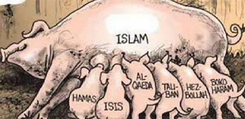 islam-et-ses-cochonnets