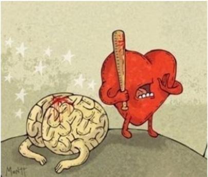 corazon-y-cerebro