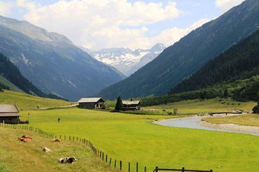 raluca ilea-viata in austria (7)