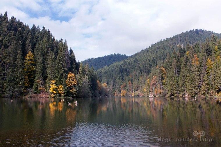 Toamna-la-Lacul-Rosu