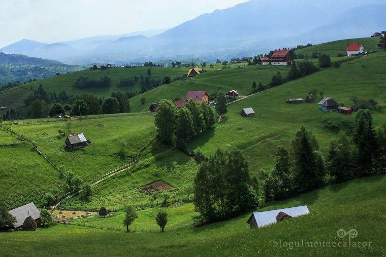 satul pestera