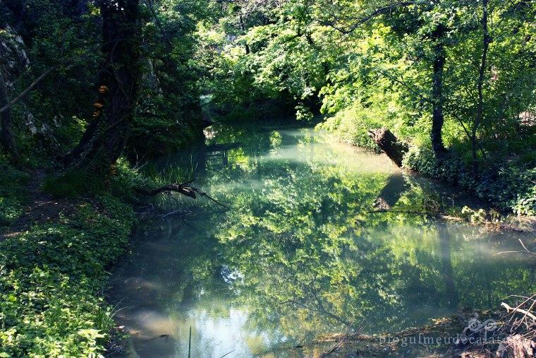 lac in padurea canionului si a cascadei kaya bunar hotnitsa