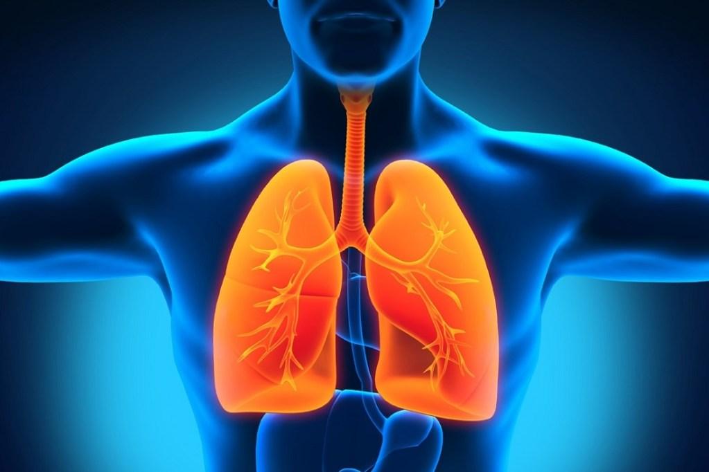 Penting!!! Hal-hal Yang Harus Diperhatikan Untuk Menjaga Kesehatan Tubuh