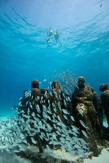 Gambar Dalam Laut : gambar, dalam, Destinasi, Dengan, Pemandangan, Bawah, Terindah, Dunia