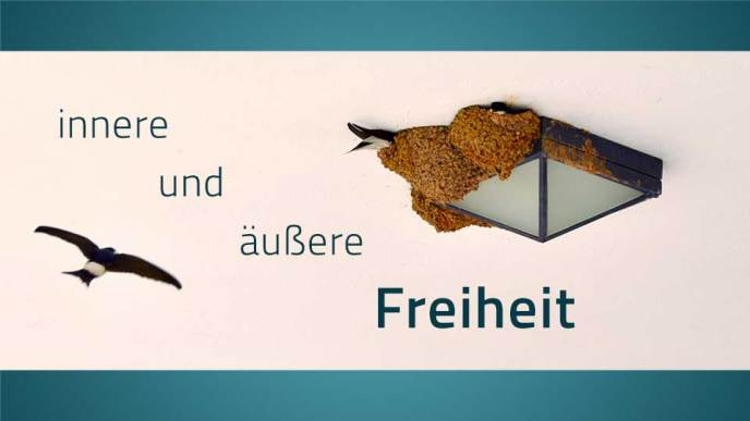 Eine Schwalbe fliegt in ihr Nest an einer Lampe, dazu der Text: äußere und innere Freiheit