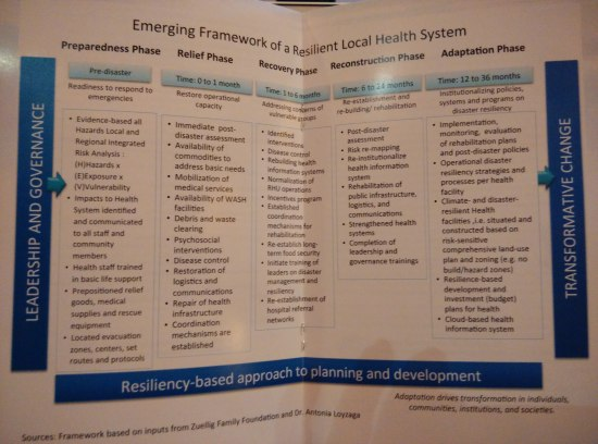 framework of a resilient local health syste