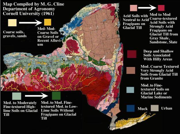 NY Soil Map