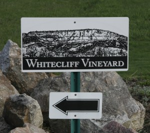 Whitecliff Vineyards, 04