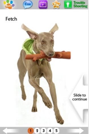 Blomsterhundar tipsar om iPhone-appar - Dog tricks