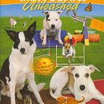 Control unleashed - Blomsterhundar tipsar om hundkurser och klickerträning