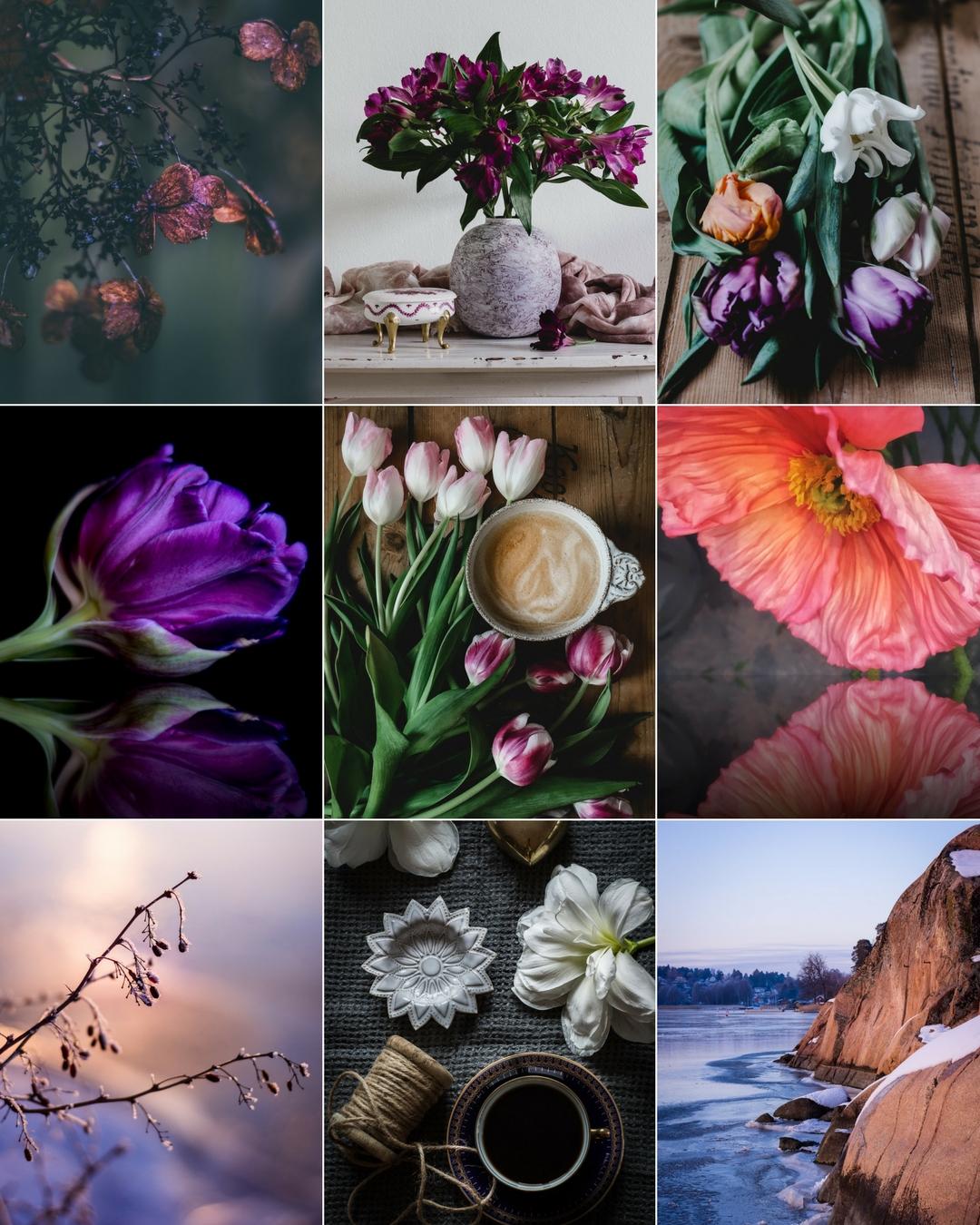 collage instagram januari