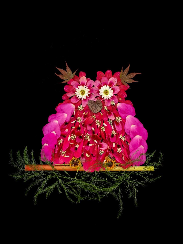 blomsterpill uggla