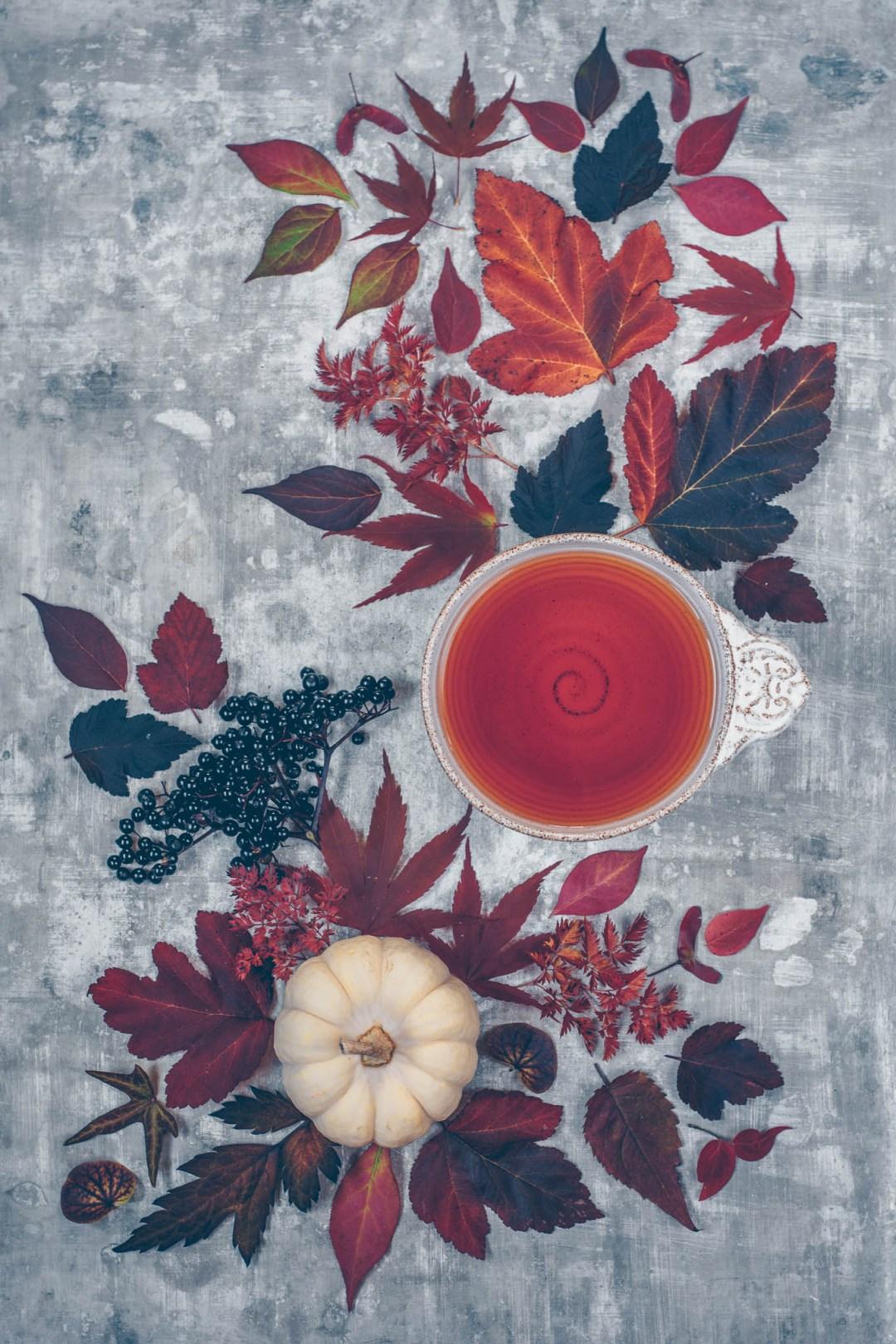 rött te höstdag