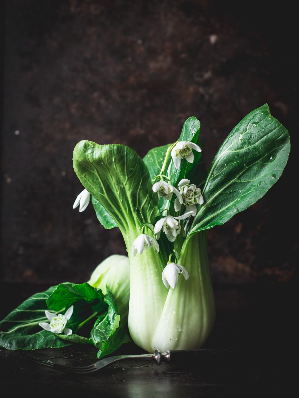 fotoprojekt anneliesblommorochgrönt