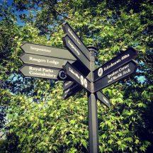 Hyde-Park-London-1