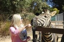 Australia Zoo 2