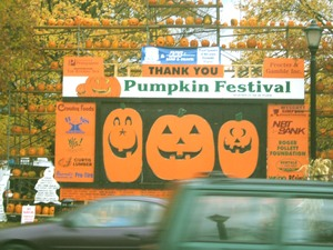 Pumpkin_festivle_fixed